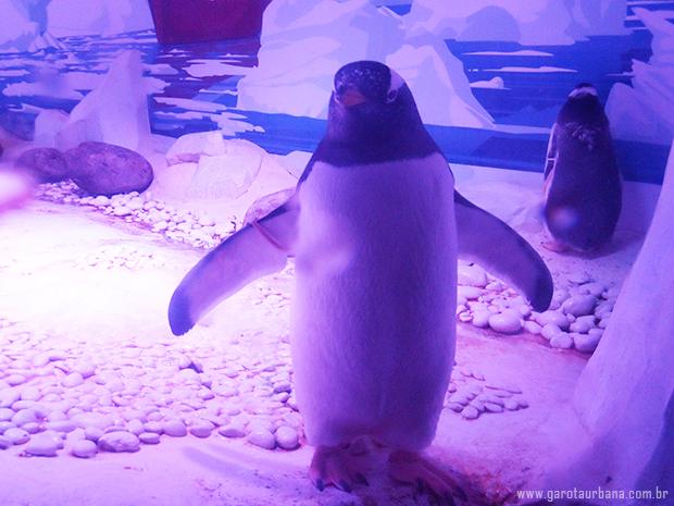 Sea Life London Aquarium 2