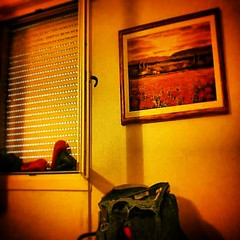 And my new picture on my badroom wall: a sunset with poppies! #hdr #hdriphoneographer #TagsForLikes #hdrspotters #hdrstyles_gf #hdri #hdroftheday #hdriphonegraphy #hdrepublic #hdr_lovers #awesome_hdr #instagood #hdrphotography #photooftheday #hdrimage #hd