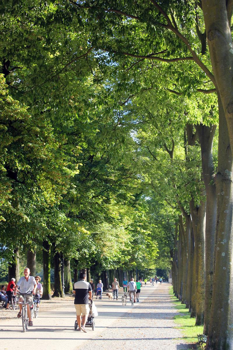 Lucca city walls park