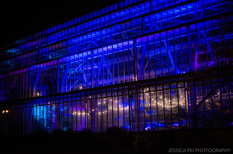 Jewel Box Outside at Night in Forest Park St. Louis