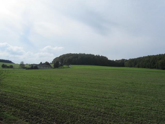 Auf der Kohlenbahn nach Wuppertal