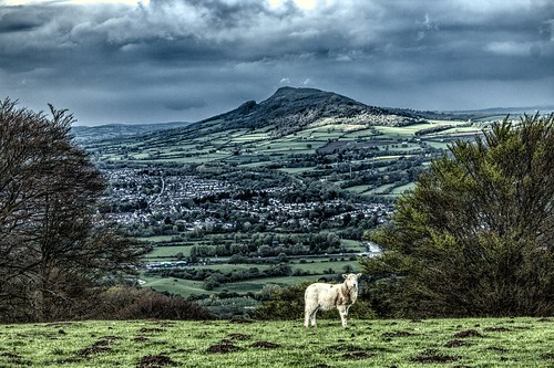 mountain wales clouds sheep breconbeacons lamb brecon beacons rainclouds gwent molehills abergavenny skirrid fawr uskvalley skirridfawr