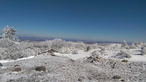 Mount Rogers Virginia Snow