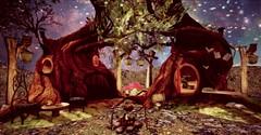 Tree Abode
