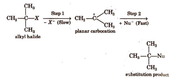 Cbse Class 12 Chemistry Notes Haloalkanes And Haloarenes