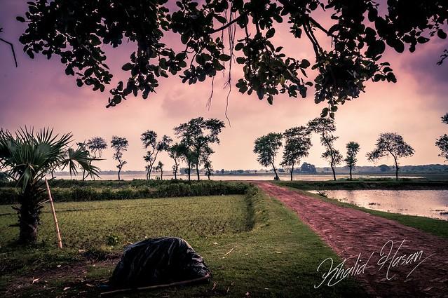 Bukvora Baor, Jessore