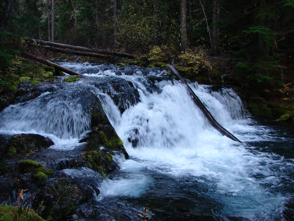 Small waterfall on Trapper Creek