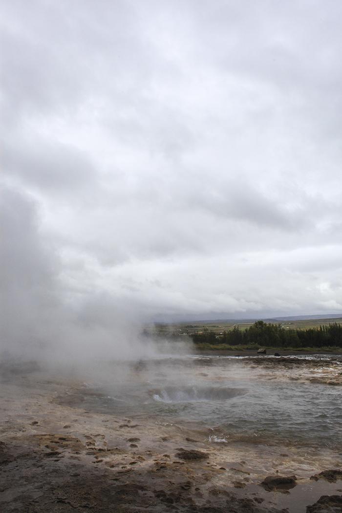 Iceland_Spiegeleule_August2014 071