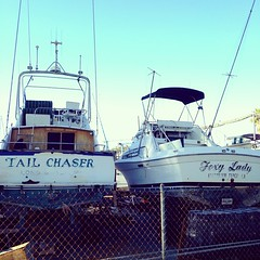 """""""Tail Chaser"""" and """"Foxy Lady"""". Perfect... :-) #DanaPointHarbor"""