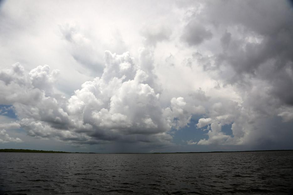 090714_Everglades20