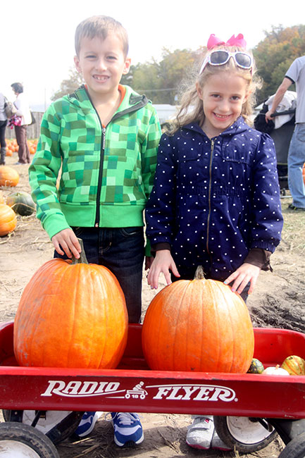 Kids-Pumpkin-Patch