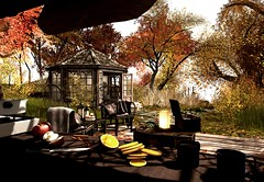 Living for Autumn