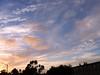 Pretty sky this evening