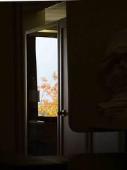 It's Fall Outside