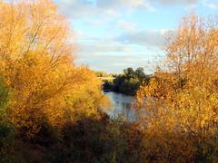 En Salamanca, mediado el otoño