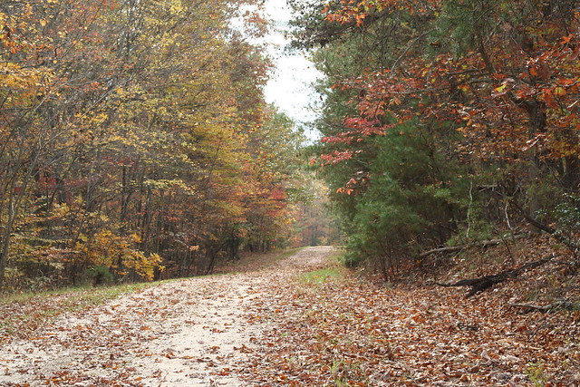 James River State Park Fall 2014 (18)