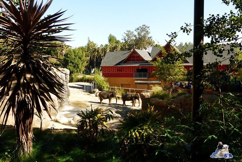Los Angeles Zoo 102
