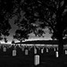 """""""the last full measure of devotion"""" ... in honor of our Veterans. by Joel deWaard"""