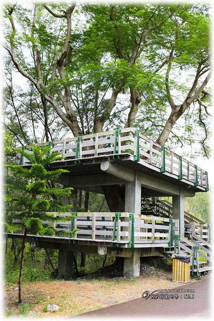 0717台東森林公園075