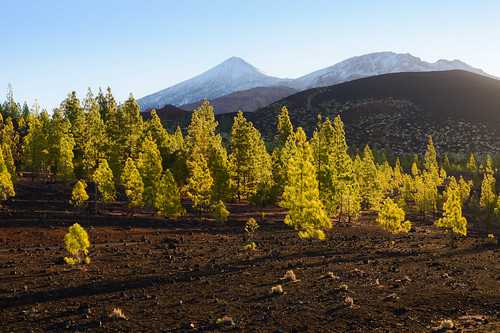 natur sunrise santiagodelteide canarias spanien es winter snow white freshsnow summer autumn indiansummer unspoilednature nature landscapes d800 goldenhour blue clouds bluehour travel journey spain canaryislands tenerife