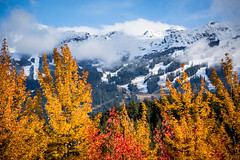 Fall in Whistler.