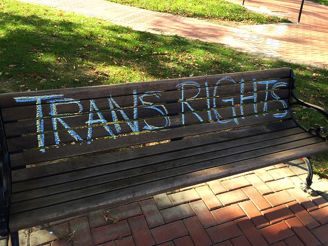Trans erasure and teaching moments: University community responds to proposed Trump admin policy with teach-in