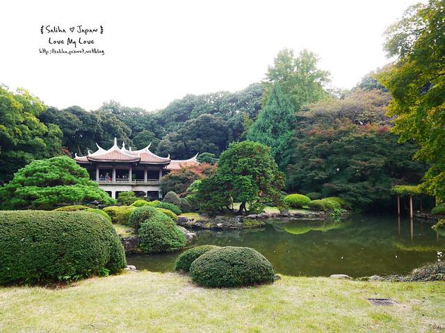 日本東京自由行新宿御苑庭園景點 (39)