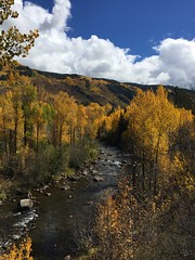 Fall Friday on the Roaring Fork River in Aspen Colorado