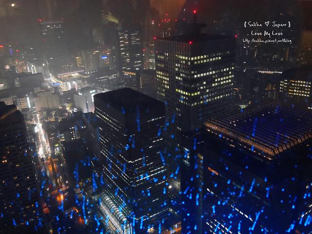東京新宿都廳免費無料夜景45F (5)