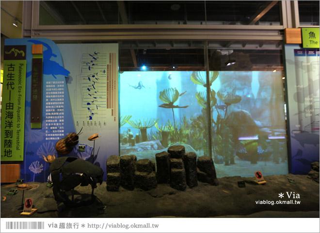 【台南南科景點】樹谷生活科學館~超大的劍齒象化石!有趣又能長知識的博物館!8