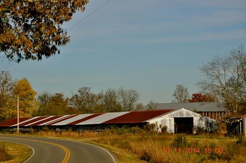 2014 November 10 traveling  Hwy 41 S Danville Rd Addison, AL