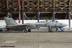 159848 215 - 208 - Private - Grumman F-14A Tomcat - Tillamook Air Museum - Tillamook, Oregon - 131025 - Steven Gray - IMG_7912