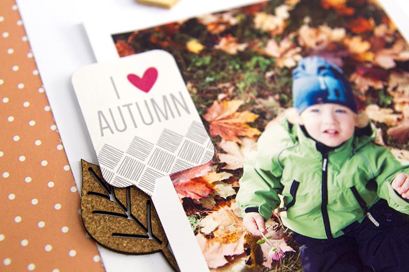 Alex Gadji - I love autumn closeup4