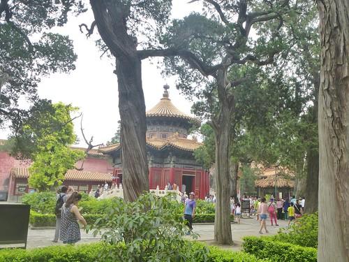 Beijing-Cité Interdite-Jardin Impérial (6)