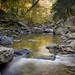 Twenty Mile Creek by Thankful!
