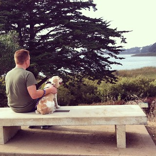 #dogstagram Sitting pretty. Quick break from our walk around Lake Merced