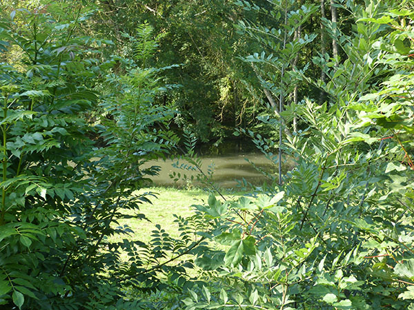 étang saint-Ay