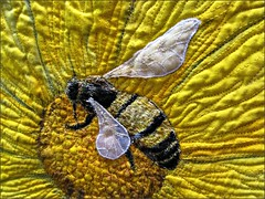Coreopsis quilt, bee detail