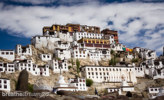 Ladakh Thiksey monastery