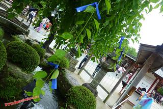 P1060406 Mikujis de color azul, Tenmangu  (Dazaifu) 12-07-2010 copia