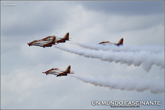11OCT-Aguila01