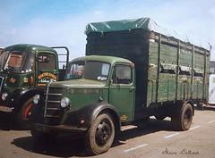 Horsebox, cattle & Livestock lorries