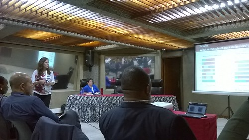 ILRI scientist Silvia Alonso presents at the 6th All Africa Conference on Animal Agriculture