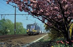 * Belgien  Baureihe  25  New Scan