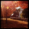 Fall in Newington... Pretty, n'est pas? #library #historicdistrict #leafpeeping