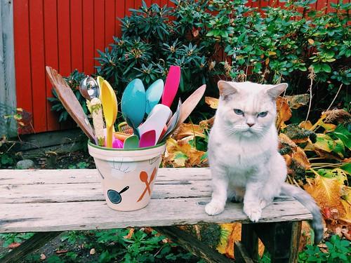 pia k stockholm painted pot