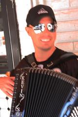 accordion, diatonic button accordion, folk instrument, button accordion, garmon, wind instrument,