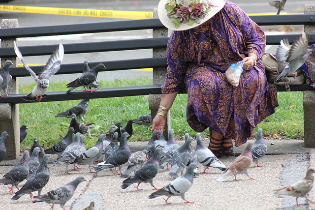 WomanFeedingPigeons.DupontCircle.WDC.14October2014