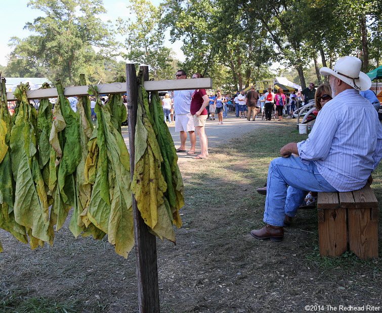 35 drying tobacco Field Day Of The Past Rockville Virginia