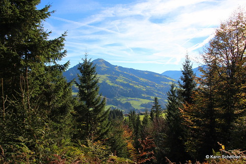 Animagis_Tirol_Oct2014 (1)